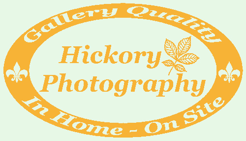 Hickory Photography